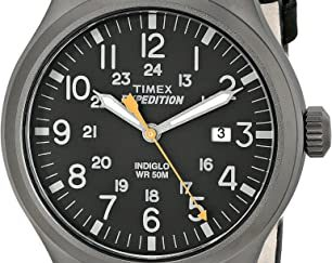timex watch 913CTC8bawL